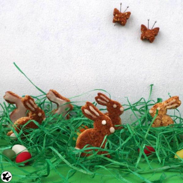 chilibluetendotcom Knusperhasen und Schmetterlinge