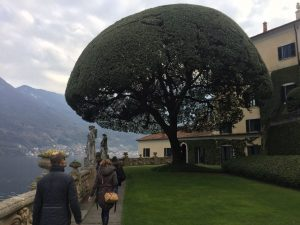 Garten der Villa Balbianello #LagodiComo | chilibluetendotcom